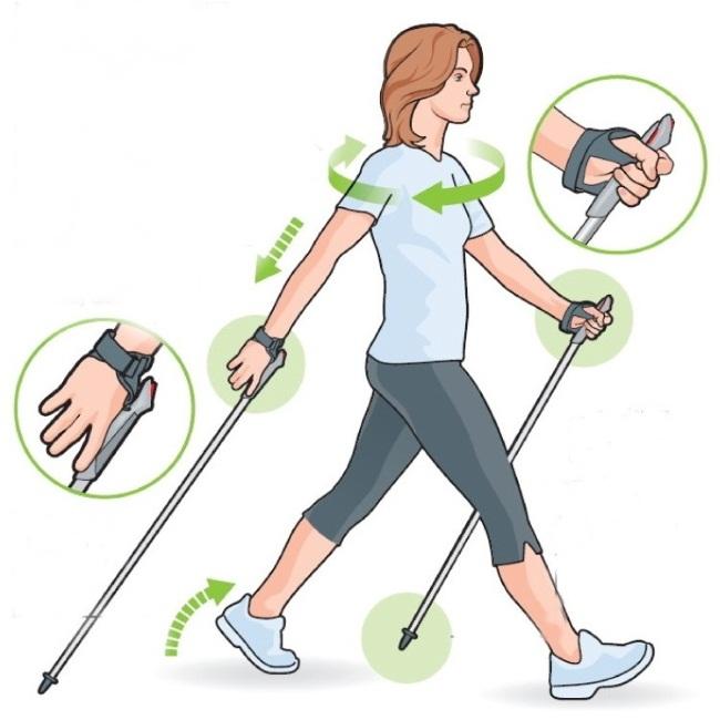 4f0ff5c4a Инструкция: скандинавская ходьба с палками – правильная техника и советы