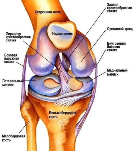 почему болят колени у спортсменов Вам сказать
